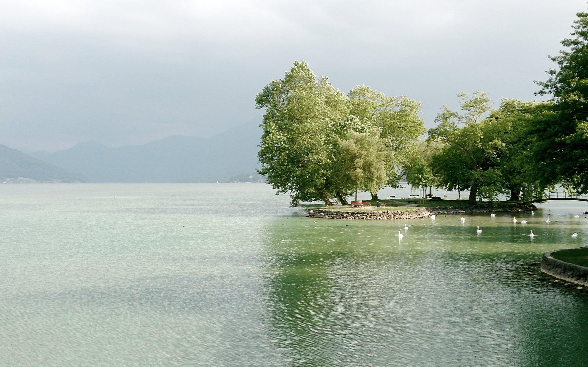 The idyllic Lake Zug in Cham, Switzerland